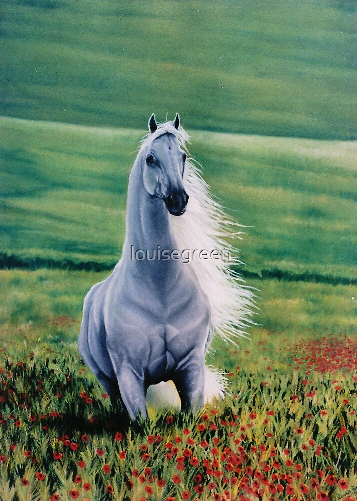Andalusian Spirit by louisegreen