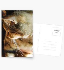 'Mouse' Postcards