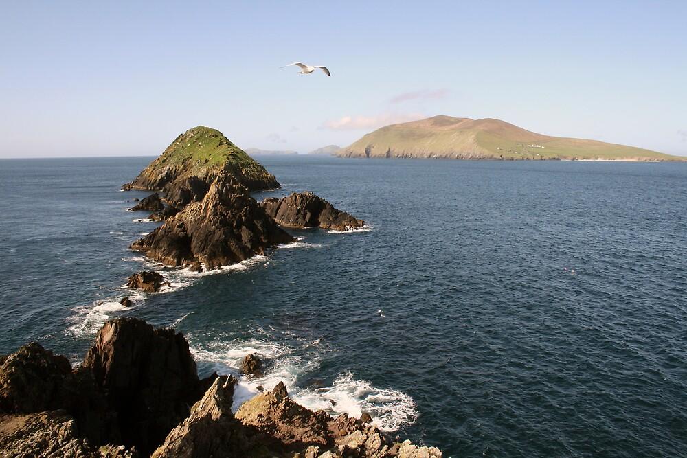 Dingle sea view by John Quinn