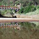 St Albans Bridge - MacDonald River NSW by Bev Woodman