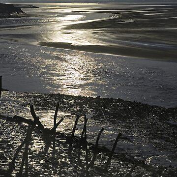 Severn Estuary  by kens