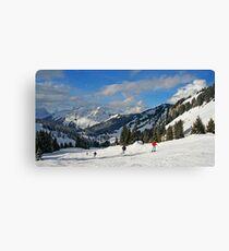 Why I ski too Canvas Print