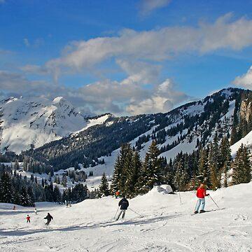 Why I ski too by kens