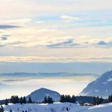 Why I Ski by kens