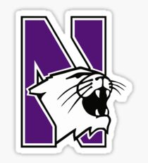 Northwestern Wildcats Sticker