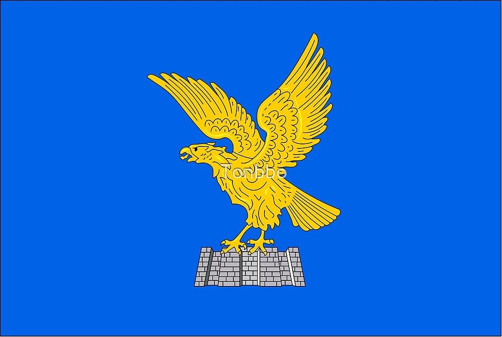 Flag of Friuli-Venezia Giulia, Italy by Tonbbo