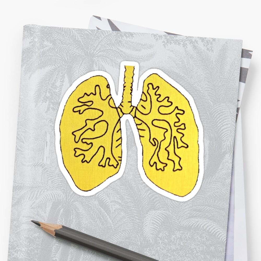 lungs by c. elizabeth