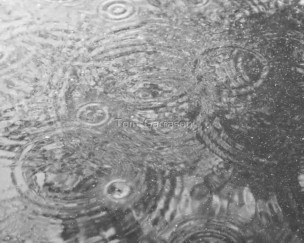 Reflections by Tom  Garrason