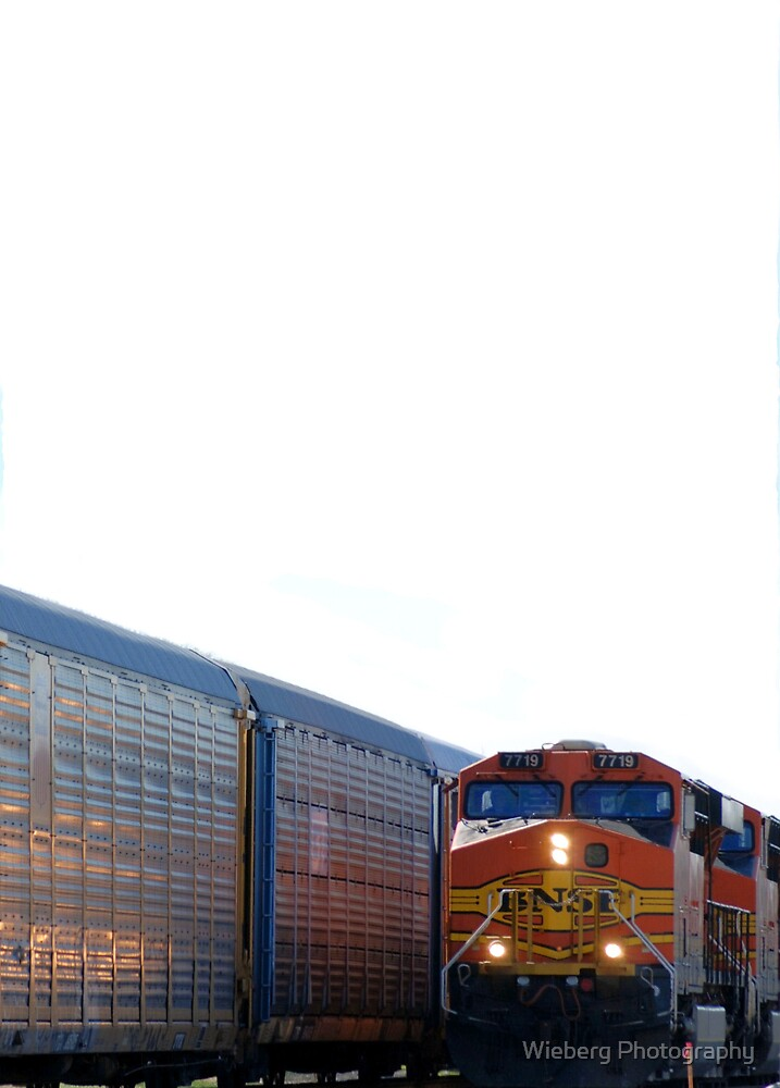 I see the train a comin by Susie Wieberg