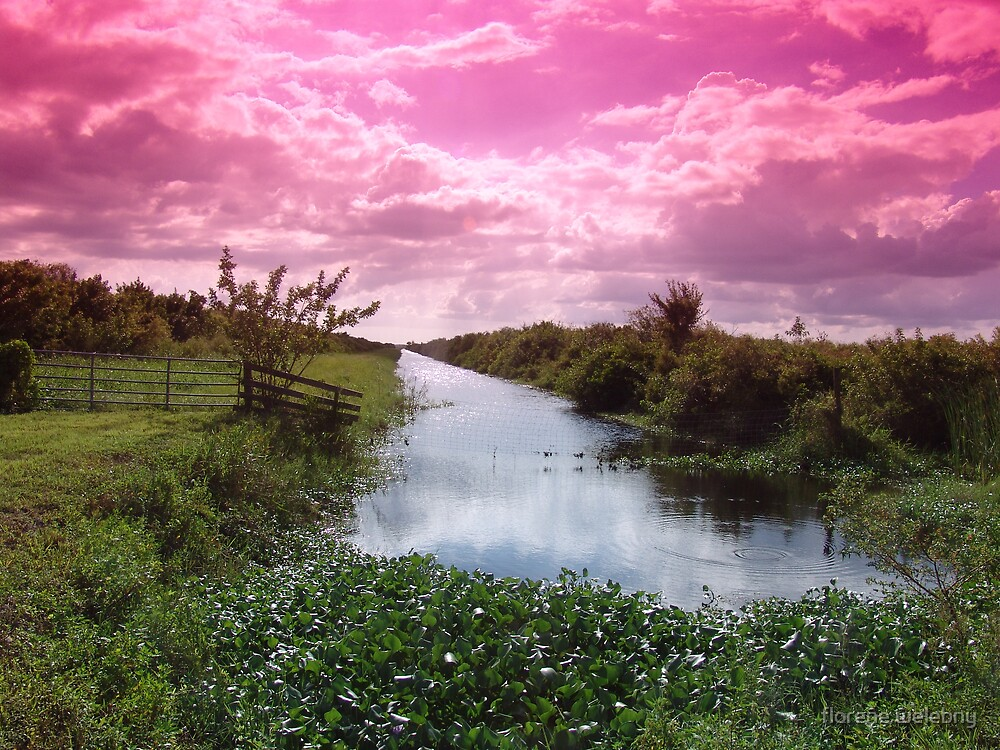 Seminole Clouds by florene welebny