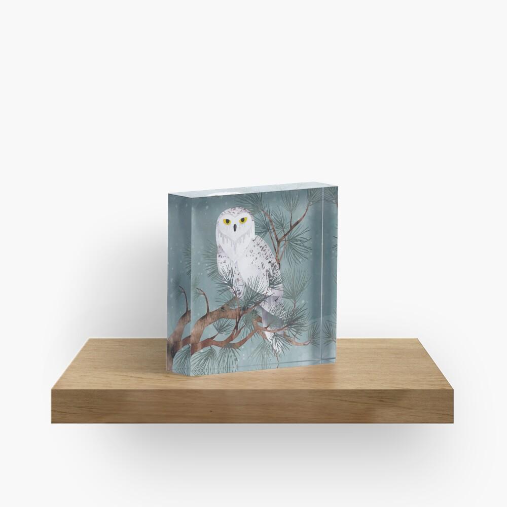 Schneebedeckt Acrylblock