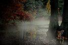 Enchanted by Varinia   - Globalphotos