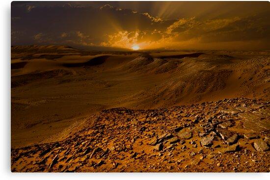 Sahara by Craig Hender