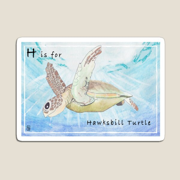 H is for Hawksbill Turtle Magnet