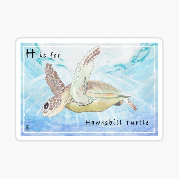 H is for Hawksbill Turtle Sticker