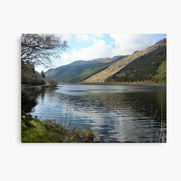 A corner in Loch Eck Canvas Print