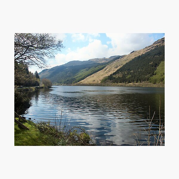 A corner in Loch Eck Photographic Print