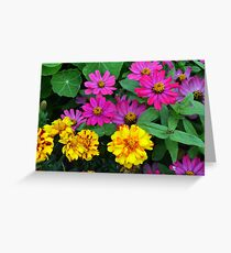 Pink and yellow flowers background Greeting Card