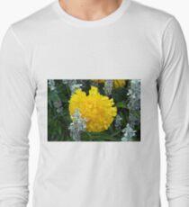 Beautiful yellow round flower in the garden  T-Shirt