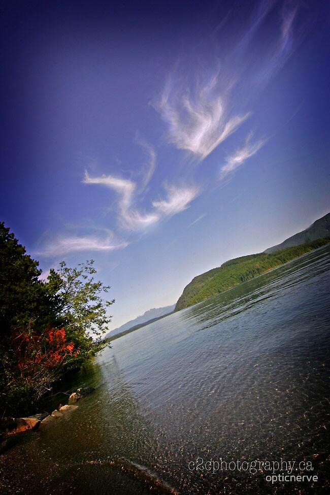 Dragon cloud by opticnerve