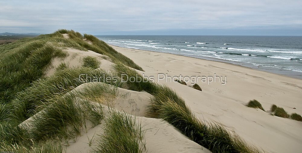 Where Sand Meets Water by Charles Dobbs Photography