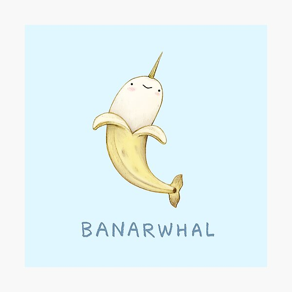 Banarwhal Photographic Print