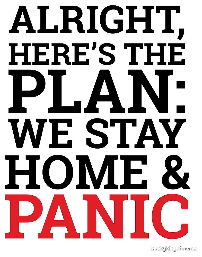Panic! At The Domicile by buckykingofmeme