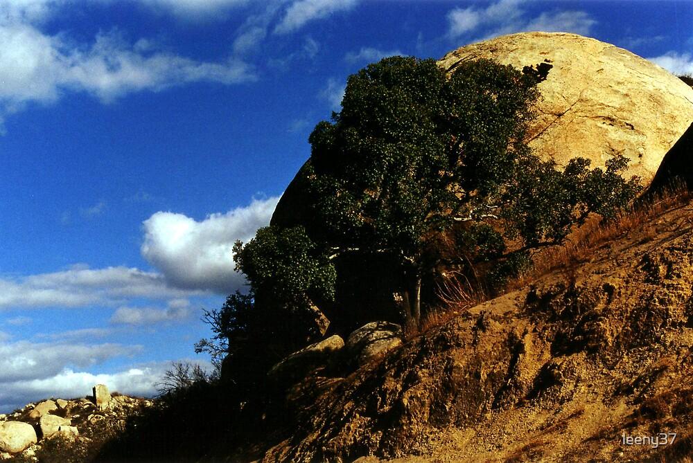 Hillside by leeny37
