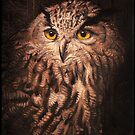 Eurasian Eagle-owl In The Night by Gregorio