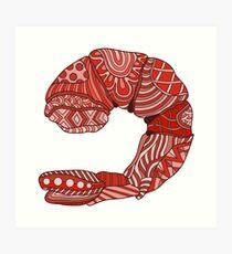 Colorful Shrimp Art Print