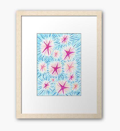 2205 - Rosa-rote und Pinke Sterne vor bläulichem Himmel Framed Print
