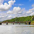 Ferrycarrig, Co. Wexford, Ireland by David Carton