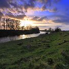 The River Tees at Blackwell, Late February. by Ian Alex Blease