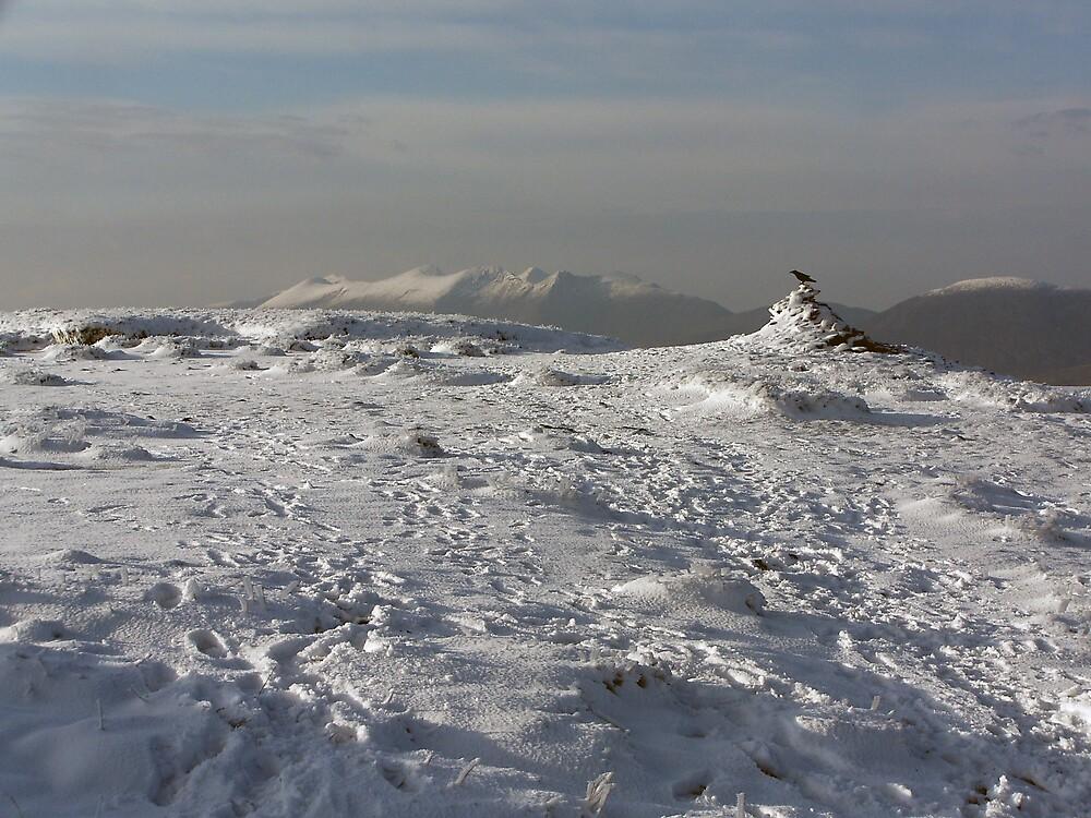 Mangerton mountain summit by John Quinn