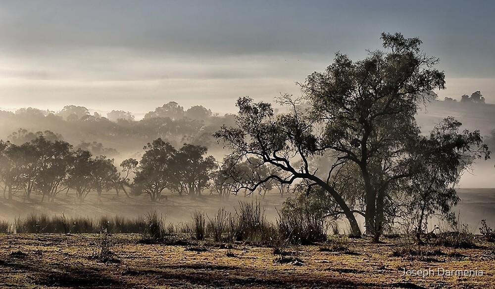 Early Morning Fog by Joseph Darmenia