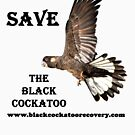 Save the Black Cockatoo by Coralie Plozza