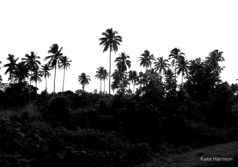 Palm Trees - Samoa by randomness