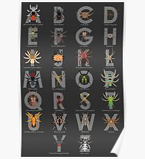 Spider and Tarantula Alphabet Poster