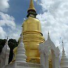 Thai Temple  by Farah McLennan