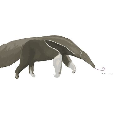 Giant Anteater by stilo29
