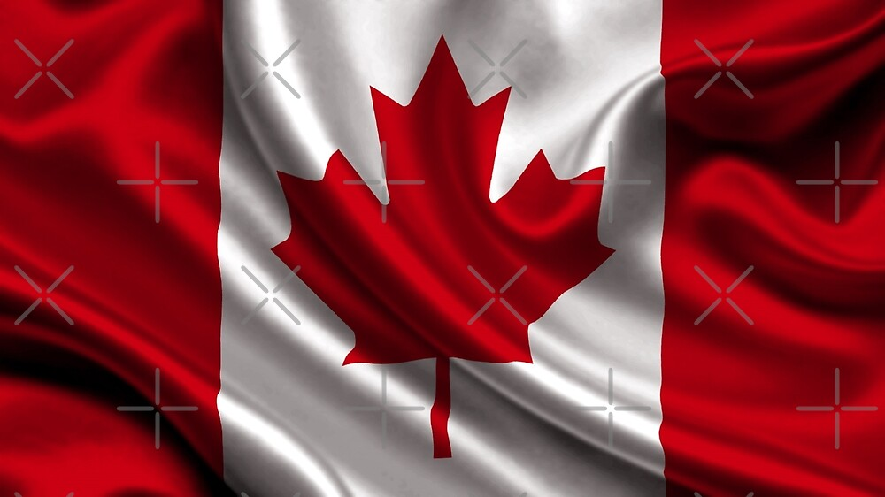 Flag of Canada by Antonio  Silveira