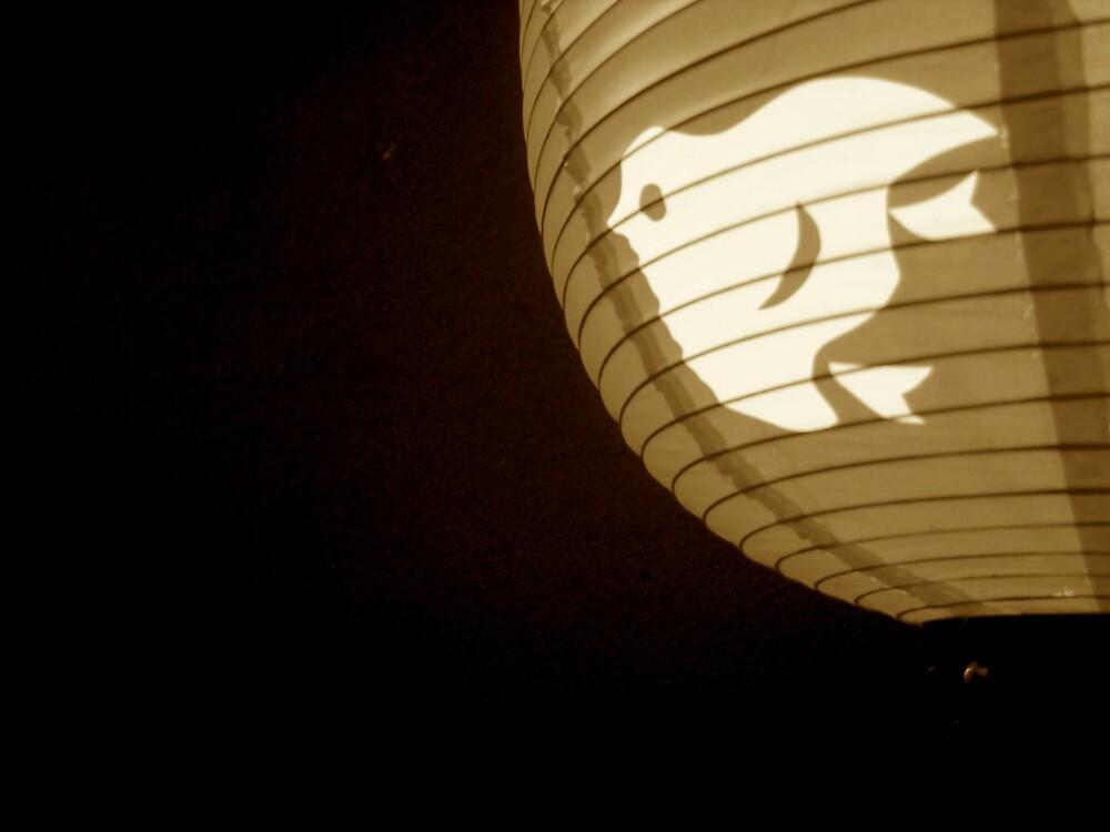 bird lantern II by geikomaiko