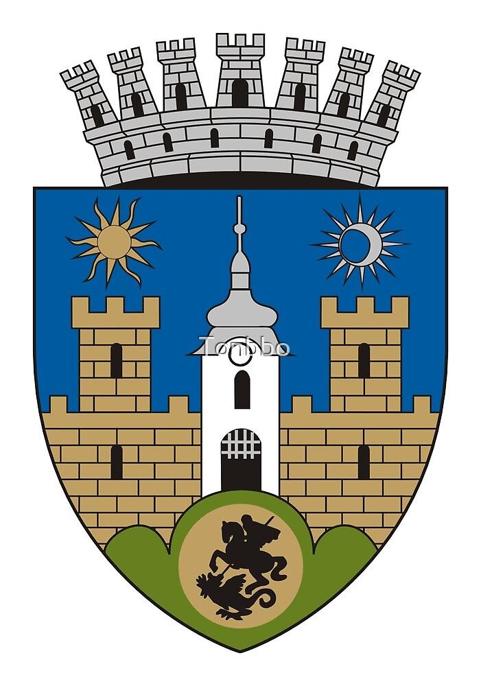 Sfântu Gheorghe Coat of Arms by Tonbbo