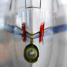 Tail fin by Tony Hadfield