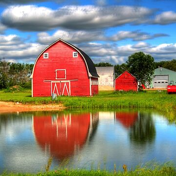 Country Barnyard by umpa1