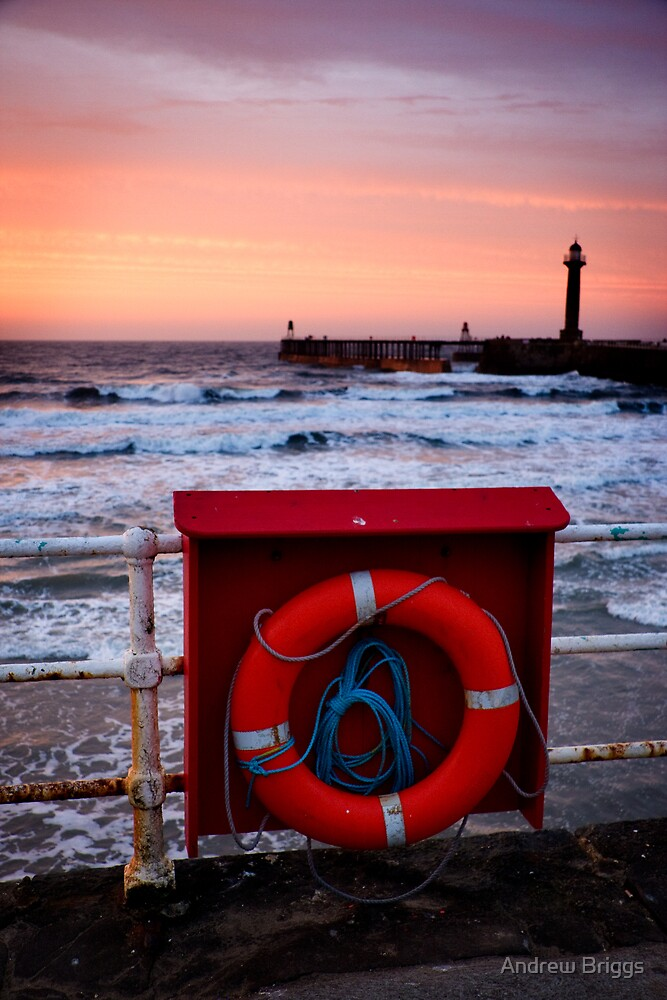Whitby XVII by Andrew Briggs
