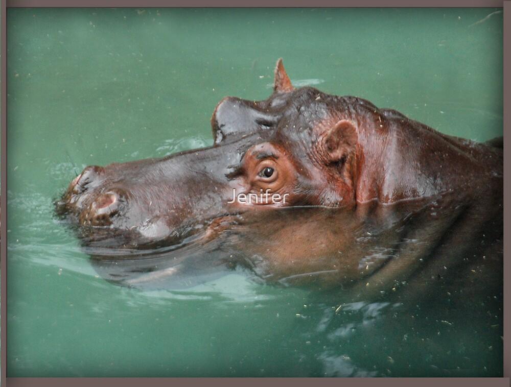 Happy Hippo by Jenifer