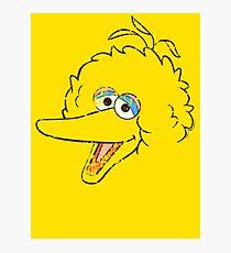 Big Bird Face Photographic Print