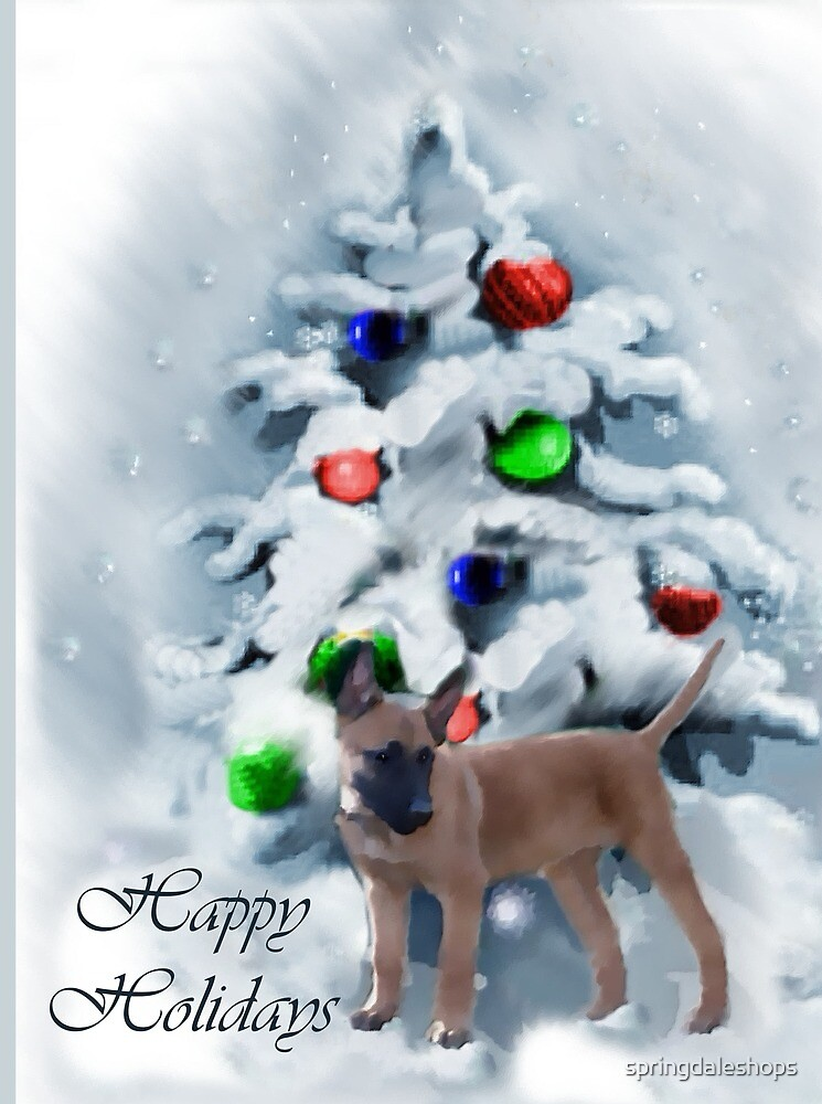 Belgian Malinois Puppy Christmas Art Gifts by springdaleshops