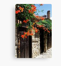Flowers stretching out over the gates of an old house in Nessebar, Bulgaria Canvas Print